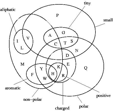 What Is Quadrilateral as well 204139795585567112 besides Character Analysis Map 342778 furthermore Quadrilaterals further Templates Masters. on venn diagram